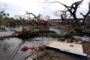 101113_tacloban03_linus-1